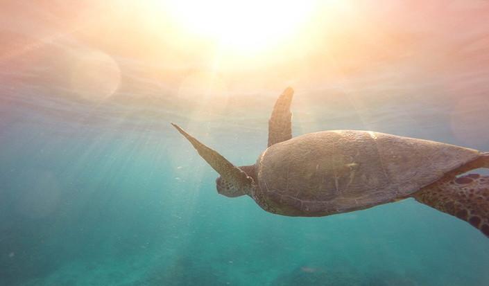 6 modi per ridurre il consumo di plastica durante una vacanza in barca