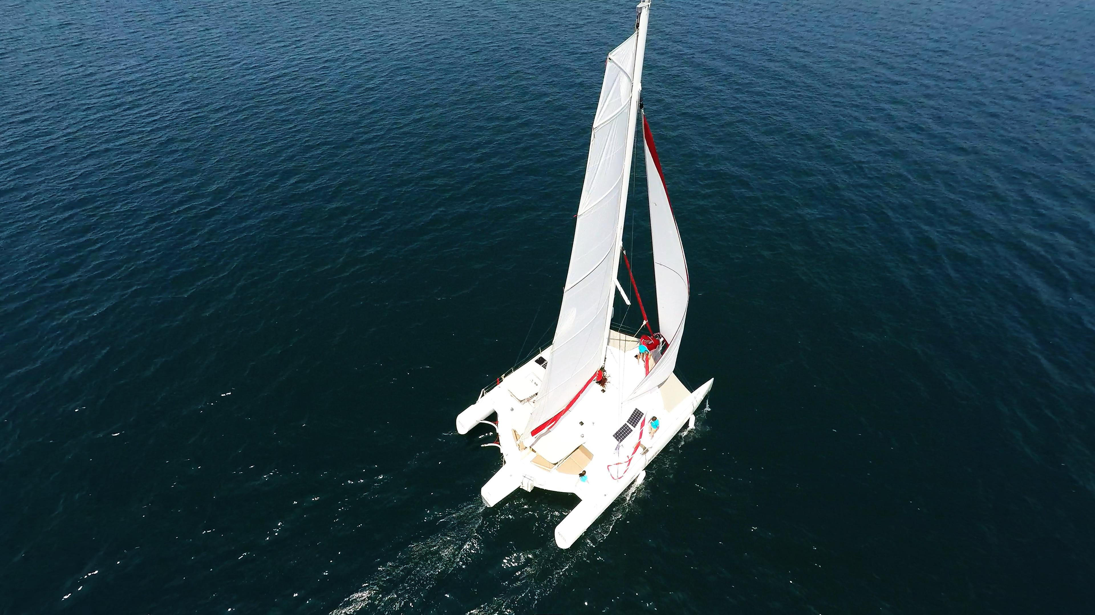 vista dell'uccello di trimarano  yacht veleggiare