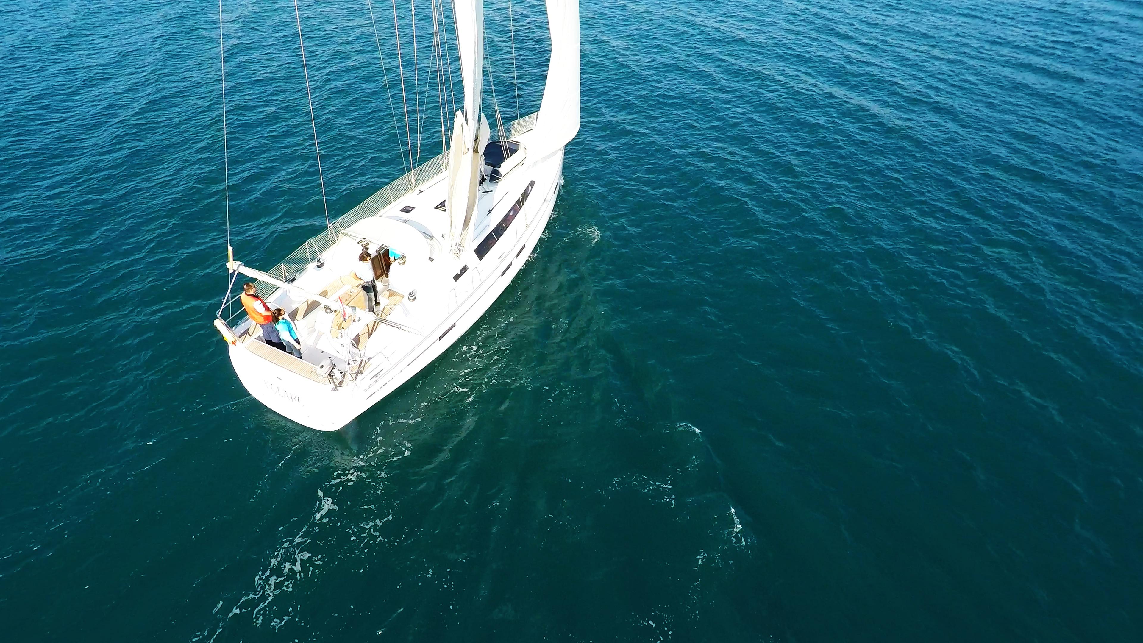 barcha a vela barca a vela bavaria 46 ponte yacht a vela vela barca