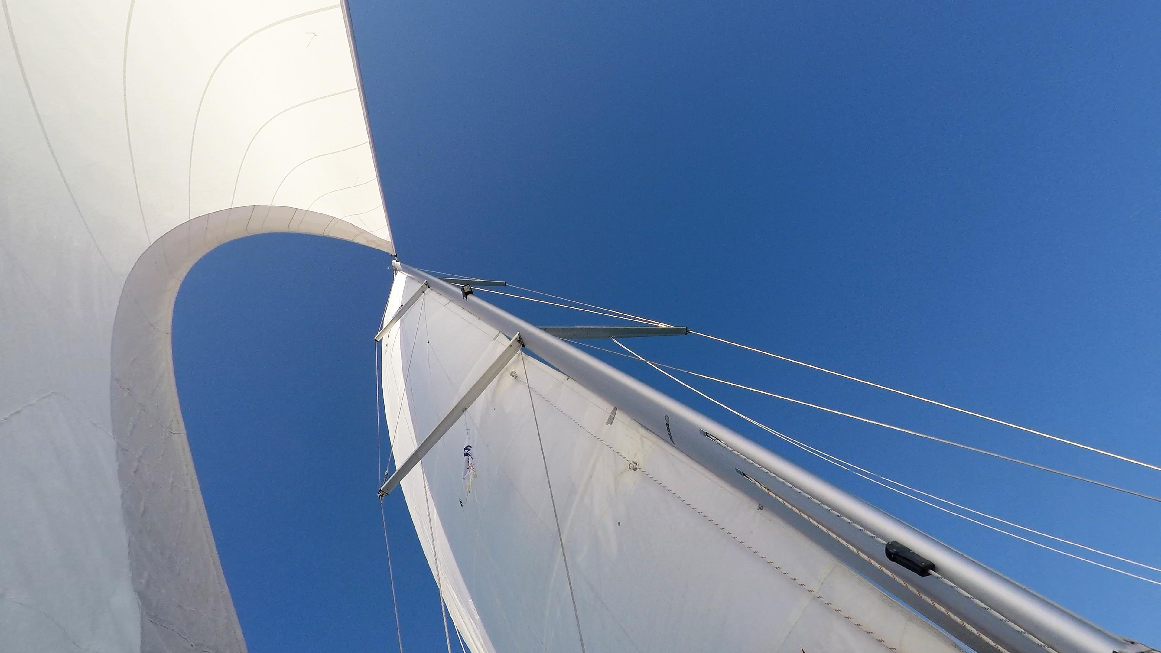 barcha a vela vele albero barca a vela